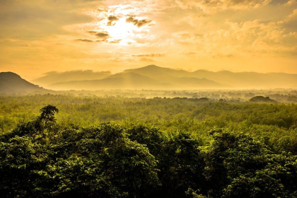 Idées vacances : Voyage photo au Sri Lanka