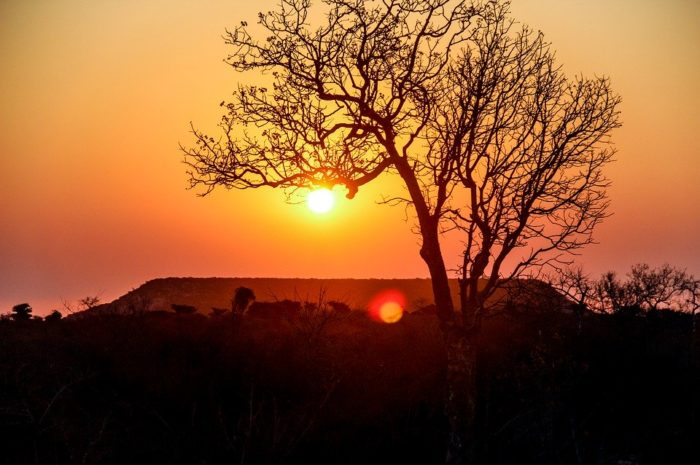 Paysage, Madagascar, Montagnes, Arbres, Tourisme